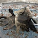 Una immagine simbolica per ricordare le morti bianche in un cantiere di Pontedera (Pisa), in una immagine del 04 marzo 2008. Le morti sul lavoro hanno toccato nel 2009 il minimo storico. Secondo i dati dell'Inail, diffusi in luglio, mai dal dopoguerra - per l'esattezza dal 1951, inizio delle rilevazioni statistiche - si era registrato un livello, seppur ancora drammatico, cosi' basso: 1.050 le vittime nel 2009. Un numero in flessione del 6,3% sul 2008 (quando i casi mortali erano stati 1.120). ANSA/FRANCO SILVI
